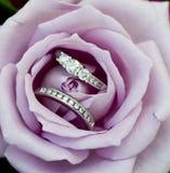 Elegant Promise. Beautiful diamond wedding rings nestled in a purple rose Stock Photos