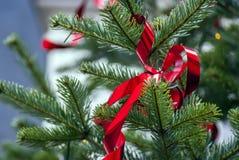 Elegant red ribbon knot decoration Stock Images