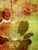 Elegant retro. Background with flowers vector illustration