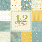 12 Elegant romantic vector seamless patterns (tiling) Stock Images