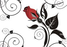 Elegant rose background. Vector drawing of the greeting card with rose Royalty Free Stock Photos