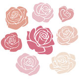Elegant rose flowers vector set Stock Image