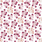 Elegant roses background for print,pillow,ceramic,etc. Elegant roses background for print,pillow,ceramic and other. Illustration in big sizes Stock Photography