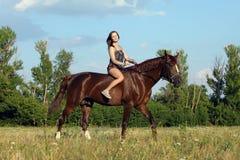 Elegant ruiter bloot het berijden paard Royalty-vrije Stock Afbeelding