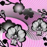 Elegant sömlös blom- modell med orkidér arkivbilder
