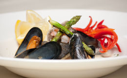 Elegant seafood dish. Modern dish of fish, shellfish and vegetables with shallow focus on shell, prawn and asparagus Royalty Free Stock Photos