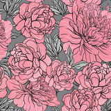 Elegant Seamless color peony pattern on gray background Royalty Free Stock Image