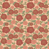 Elegant seamless floral pattern with roses Stock Image