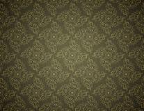 Elegant Seamless Pattern of Floral Vintage CLassic Vines Stock Images