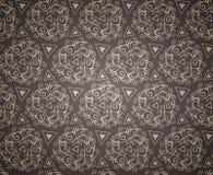 Elegant Seamless Pattern of Floral Vintage CLassic Vines Stock Images