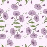 Elegant seamless pattern with flowers Royalty Free Stock Image