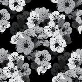 Floral seamless pattern. Elegant seamless pattern with hand drawn decorative cherry blossom flowers, design elements. Floral pattern for wedding invitations Royalty Free Stock Photos