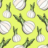Elegant seamless pattern with hand drawn garlic, design elements. Can be used for invitations, greeting cards, scrapbooking, print Stock Images