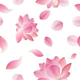 Elegant seamless pattern with lotus flowers, design elements. Royalty Free Stock Images