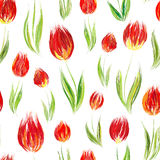 Elegant seamless pattern with oil painted red tulip flowers, design elements. Royalty Free Stock Images