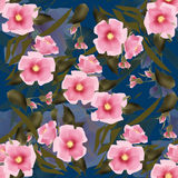 Elegant seamless pattern pink flowers background Stock Images