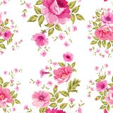 Elegant seamless peony pattern. Royalty Free Stock Image