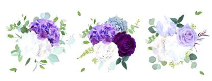 Elegant seasonal dark flowers vector design wedding bouquets. Purple and violet rose, white and lilac hydrangea,eucalyptus, iris, succulents, greenery. Floral stock illustration