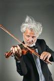 Elegant senior violinist Royalty Free Stock Image