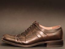 Elegant shoe Royalty Free Stock Photography