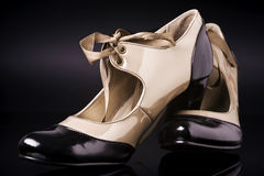 Elegant shoes Royalty Free Stock Image