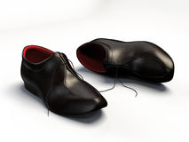 Elegant shoes Stock Photos