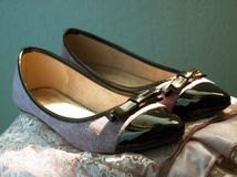 Elegant shoes Stock Photography