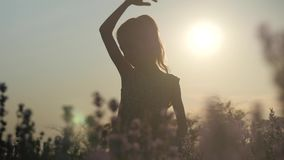 Elegant silhouetmeisje in aard stock videobeelden
