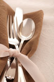 Elegant Silver Place Setting Ready for the Party Stock Images