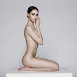 Elegant sitting lady Royalty Free Stock Image