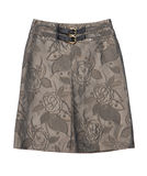 Elegant skirt Royalty Free Stock Images