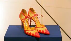Elegant sko för damer Arkivfoto