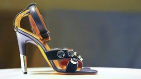 Elegant sko för damer Arkivbild