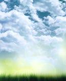 Elegant sommarbakgrund Arkivfoto