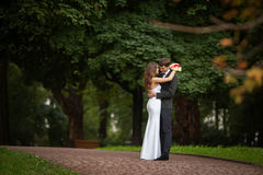 Elegant, sophisticated bride couple. Photographed in the autumn park Stock Photography