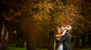 Elegant, sophisticated bride couple. Photographed in the autumn park Royalty Free Stock Image