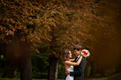 Elegant, sophisticated bride couple. Photographed in the autumn park Royalty Free Stock Photography
