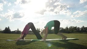 Elegant sporty ladies practicing yoga pose in park stock footage