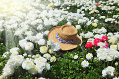 Elegant straw hat on a sunny day Royalty Free Stock Images