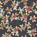Elegant stylised seamless poppy flower pattern Royalty Free Stock Image