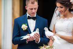 Elegant stylish brunette bride and groom holding pigeons on the Stock Photography