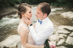 Elegant stylish happy brunette bride and gorgeous groom on the background of a beautiful waterfall in the mountains Stock Image