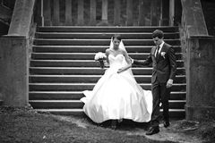 elegant stylish young couple beautiful bride and groom Royalty Free Stock Photography