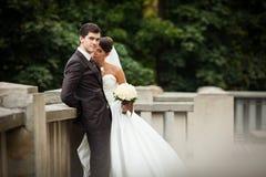 Elegant stylish young couple Stock Photos