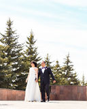 Elegant stylish young couple beautiful bride and groom on the stairs. Royalty Free Stock Photography