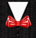 elegant suit and bow tie Royalty Free Stock Photos