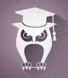 Elegant teacher owl icon Stock Photo