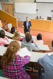 Elegant teacher with students at the lecture hall Royalty Free Stock Images