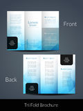 Elegant Tri Fold brochure design template Stock Images