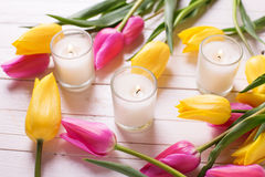 elegant  tulip flowers and candles Royalty Free Stock Photos